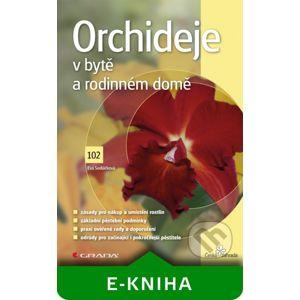 Orchideje v bytě a rodinném domě - Eva Sedláčková