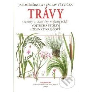 Trávy, traviny a trávniky - Jaromír Šikula, Václav Větvička