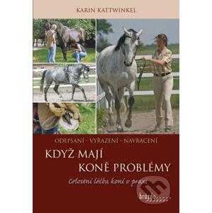 Když koně mají problémy - Karin Kattwinkel