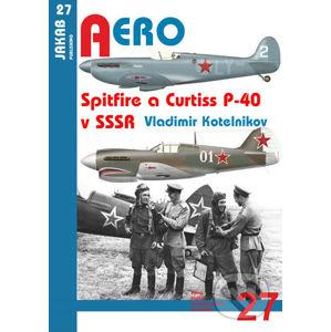 Spitfire a Curtiss P-40 v SSSR - Vladimir Kotelnikov