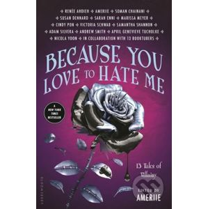 Because You Love to Hate Me - Ameriie