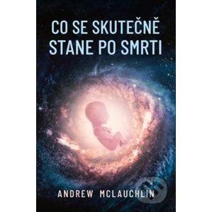 Co se skutečně stane po smrti - Andrew McLauchlin
