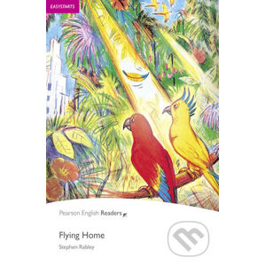 Flying Home - Stephen Rabley