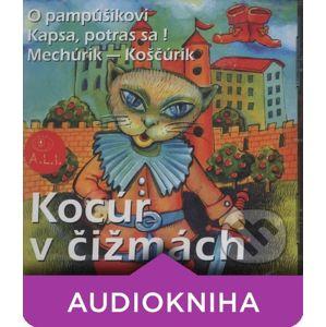 Kocúr v čižmách - Dušan Brindza