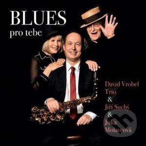 Blues pro tebe - David Vrobel, Jiří Suchý, Jitka Molavcová