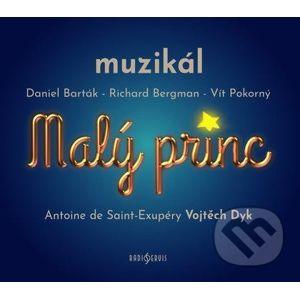 Malý princ - muzikál - Vít Pokorný, Richard Bergman, Daniel Barták