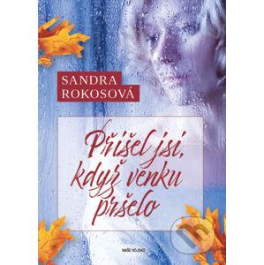 Přišel jsi, když venku pršelo - Sandra Rokosová