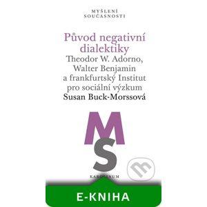 Původ negativní dialektiky - Susan Buck-Morssová